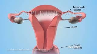 Análisis de semen cantidad de esperma