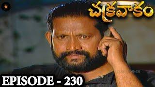 Episode 230    Chakravakam Telugu Daily Serial
