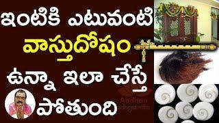 పూజామందిరంలో ఈ వస్తువులు పెట్టుకుంటే సమస్త వాస్తుదోషాలు పోతాయి Machiraju Venugopal  Vastu shastra