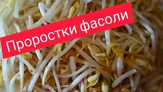 Проростки фасоли и постные сосиски.Вкусно с пользой.