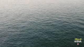 Long Island Drone Video