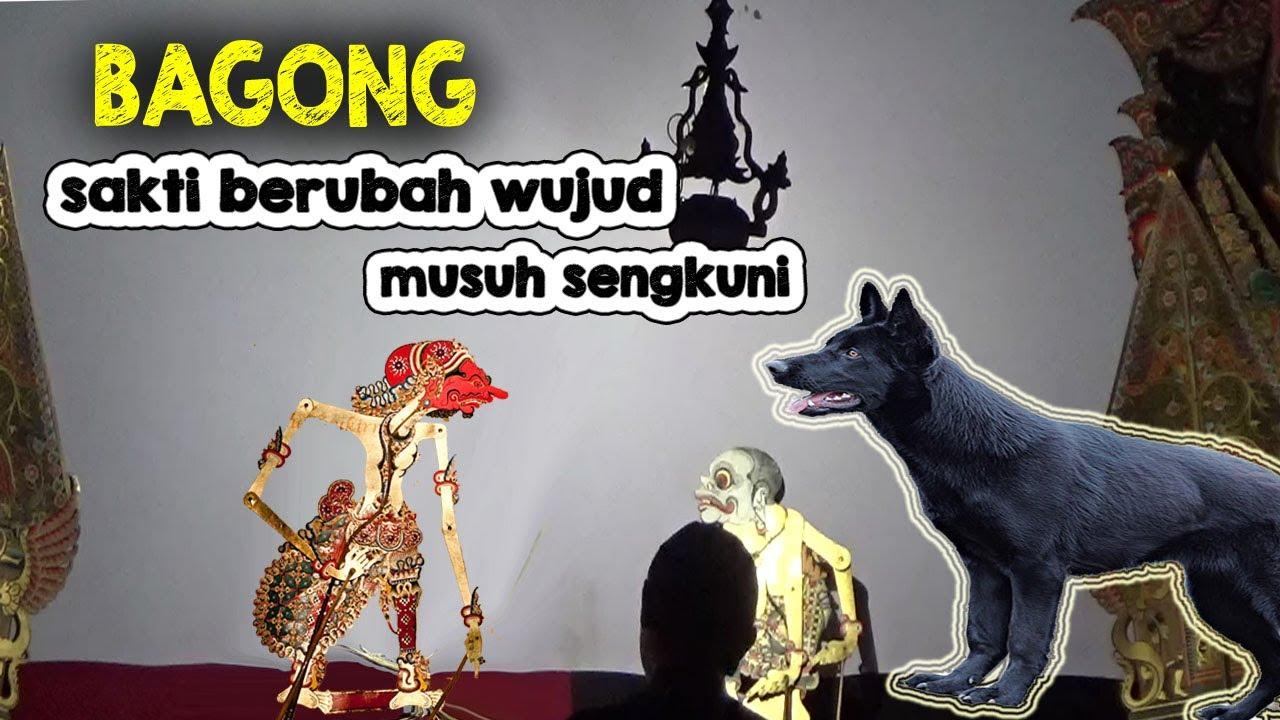 BAGONG SAKTI BERUBAH WUJUD MUSUH SENGKUNI