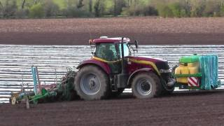 Maize Planting with Noonan Agri