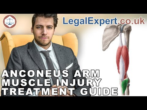Anconeus Arm Muscle Injury Treatment Guide ( 2019 ) UK