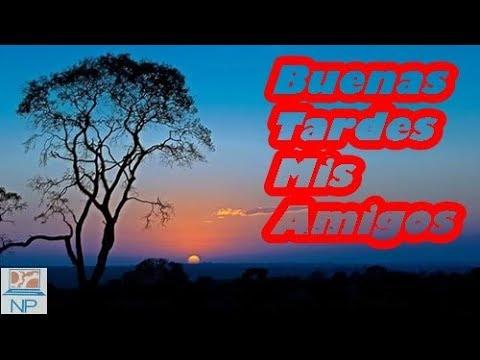 Mensagens De Boa Tarde Em Espanhol E Português Youtube