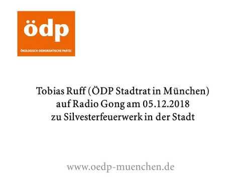Großes Feuerwerk anstatt viele private in München - ÖDP München Stadrat Tobias Ruff