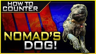 How to Counter Nomad's Dog in Black Ops 4!