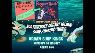 Urban Surf Kings (Penguin Or Robot) - Agent 6K6