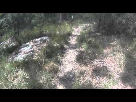 CENTRAL COAST - KINCUMBA MOUNTAIN RESERVE - WARRI AND KANNING TRAILS - MTB