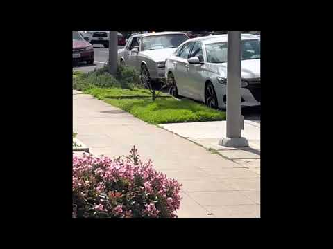 San Diego Police Officer appears to aim gun at child during traffic stop