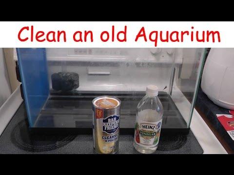 Aquarium - Remove Old Calcium Build-up - Two Ways