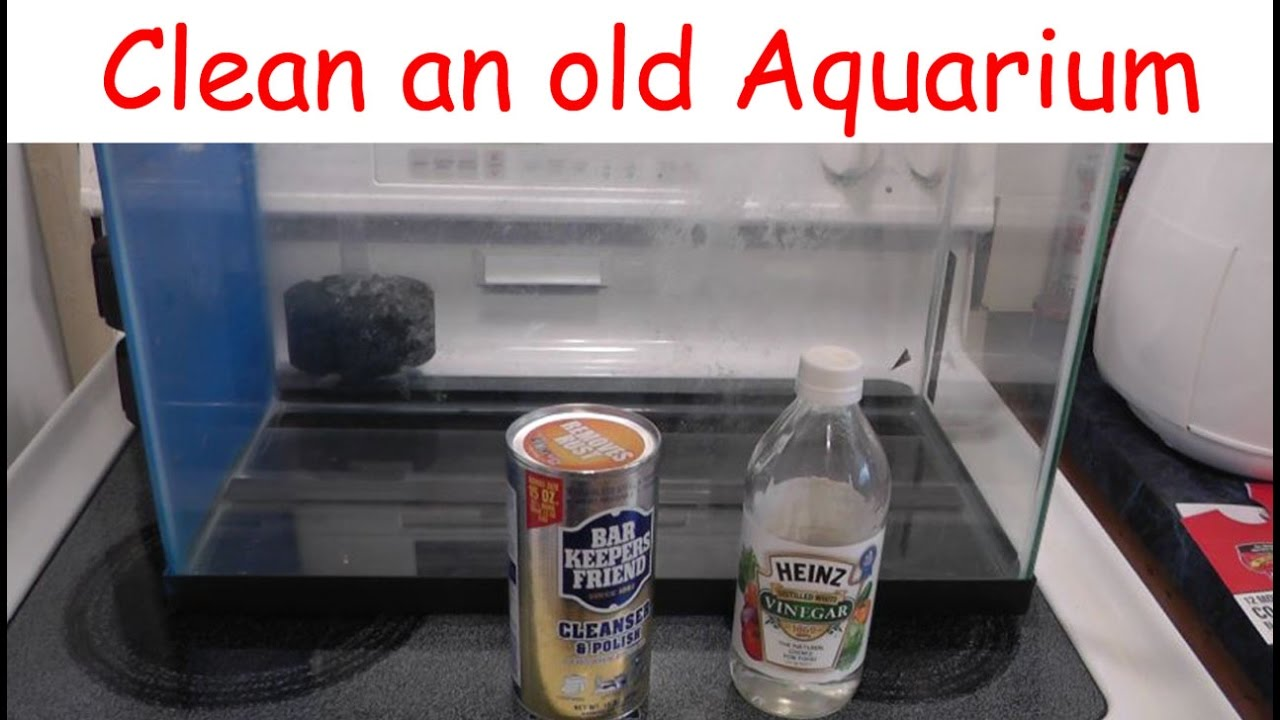 Aquarium - Remove old calcium build-up - Two Ways - YouTube