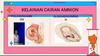 Moms, salah satu perubahan yang terjadi dalam tubuh ibu hamil adalah terbentuknya kantung dan cairan.