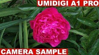UmiDigi A1 Pro Camera Sample