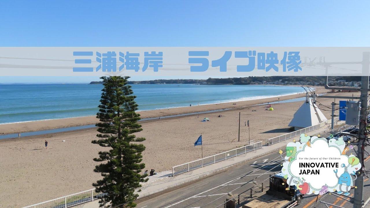 【JAPAN-LIVE】三浦海岸ライブ映像 <Miura Telework Office LIVE>(切り替え作業でURLが変わりますので、チャンネル登録をお勧めします。)