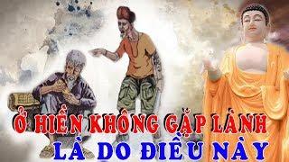 Đừng Khóc Khi Đời Bất Công Ngang Trái Phật Dạy: Ở Hiền Mà Chẳng Gặp Lành Là Do Điều Này mà ra
