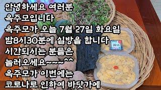바다내음 가득 품은 성게알 비빔밥과 성게알 돌미역국