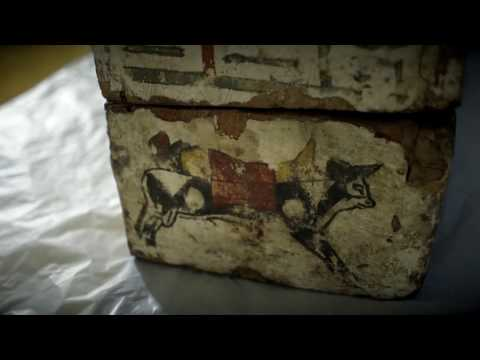 PLYMOUTH HISTORY CENTRE: Behind the Scenes - Mummies on the Move