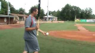HiToms Baseball: Fungo Golf