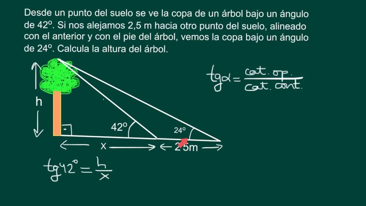 Cálculo De La Altura De Un Objeto A Pie Inaccesible Youtube Razones Trigonometricas Trigonometria Matematicas