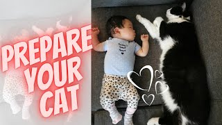 How to Prepare Your Cat for Your New Baby's Arrival (7 SIMPLE Steps) │FirstTime Mom│ Paulene Nistal
