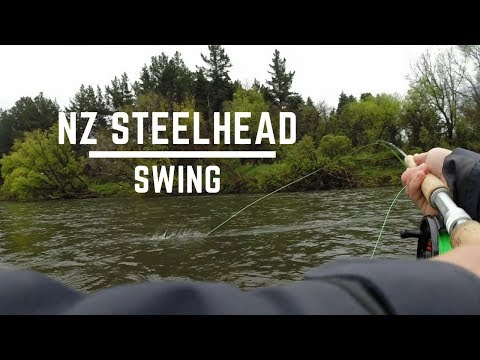 Swinging for New Zealand STEELHEAD!