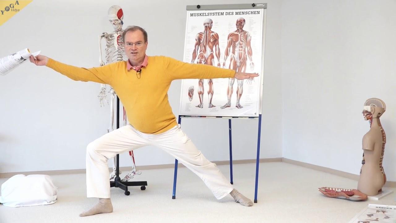 Muskelsystem – Bewegungsapparat, Teil 3 – YVS338 – Wirkung von ...