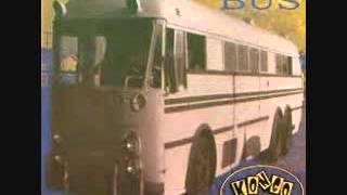 Kongo Shock Bus