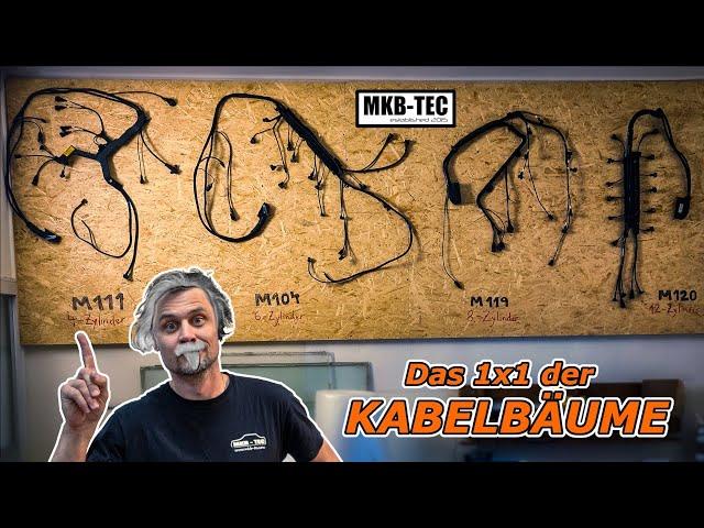 Das 1x1 der KABELBÄUME || MKB-TEC