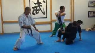 Yamaki Karate: Sensei Toshiki Otani Does Two Baseball Bat Break for Inhouse Demonstration