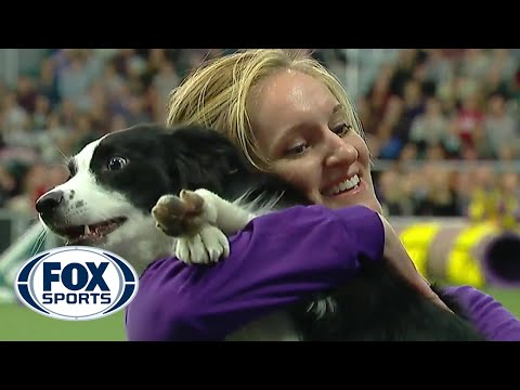 P!nk the border collie wins back-to-back titles at the 2019 WKC Masters Agility | FOX SPORTS