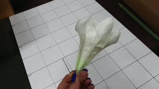 [인터넷꽃도매시장]조화백합