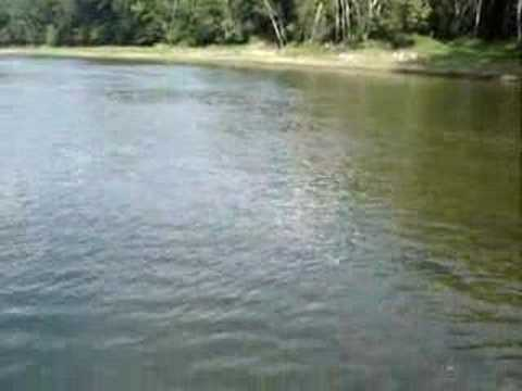 Cumberland river fly fishing in spring of 08 youtube for Cumberland river fishing