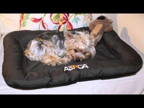 aspca-weather-&-chew-resistant-crate-mats