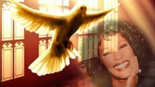 Whitney Houston Tribute- RIP- Run To You Thumbnail