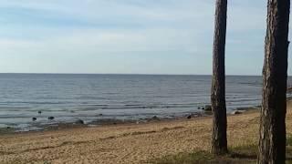 Дикий пляж на финском заливе.(, 2015-09-13T16:31:57.000Z)