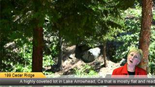 199 Cedar Ridge, Lake Arrowhead, Ca 92352