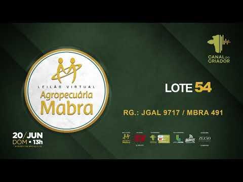 LOTE 54 JGAL9717   MBRA 491