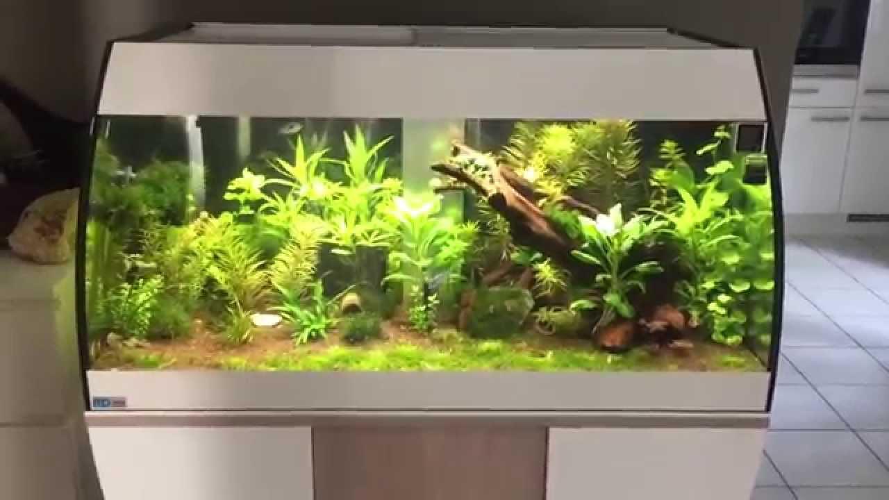 mp eheim scubabay designer aquarium youtube. Black Bedroom Furniture Sets. Home Design Ideas