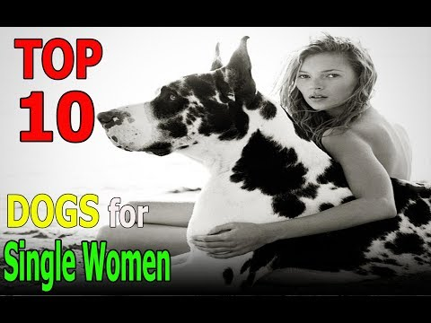 Top 10 dog breeds for single women | Top 10 animals