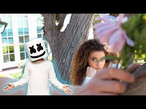 Marshmello & Anne-Marie - FRIENDS   by Sofie Dossi