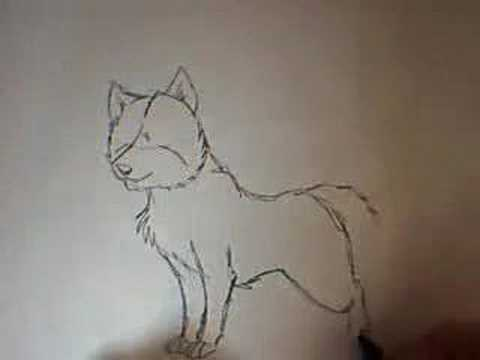 How To Draw A Dog | The Dog Guide
