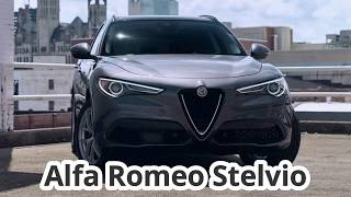 2019 Alfa Romeo Stelvio - The Company