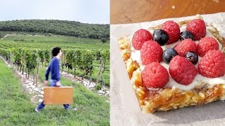 Raspberry Cheesecake In Burgundy France ! Dusting Off French Food ( Vegan )