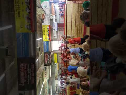 VC fair 2017 lamb show