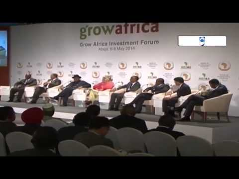 Grow Africa - Role of public & private sector in food security