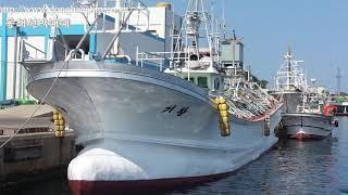 동해선박매매,중고선박매매,선박. 어선. 중고배. 신조선