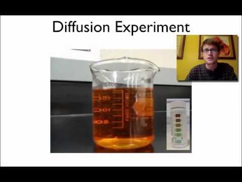 Diffusion Demo - YouTube