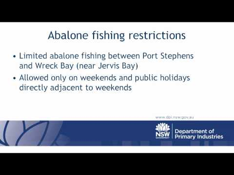 Recreational Fishing Rules For Abalone