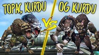 TOPAÇ KURDU VS OG KURDU !! Wolfteam EN HIZLI KURT VS EN FAZLA TAKLA ATAN KURT ( CombatStaR )